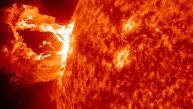 Sol Llamarada Solar